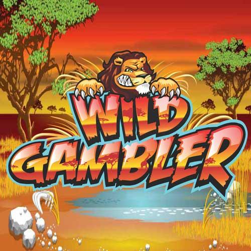 Recensione slot wild gambler