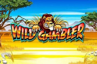 Slot Wild gambler